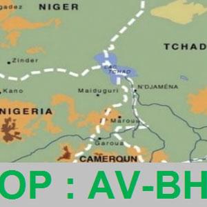 Communiqué de presse de OP: AV-BH (Opération aide aux victimes de Boko Haram)