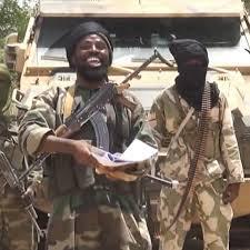 Qui sont les kamikazes de Boko Haram au Cameroun ?