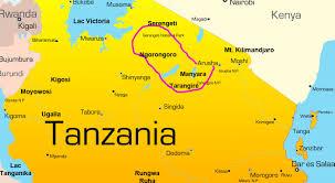 Les villages de Tanzanie seront  tous  électrifiés  d'ici 2021