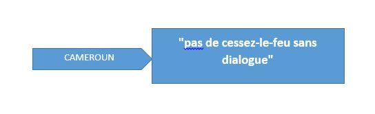 Au Cameroun anglophone, il n'y aura «pas de cessez-le-feu sans dialogue»