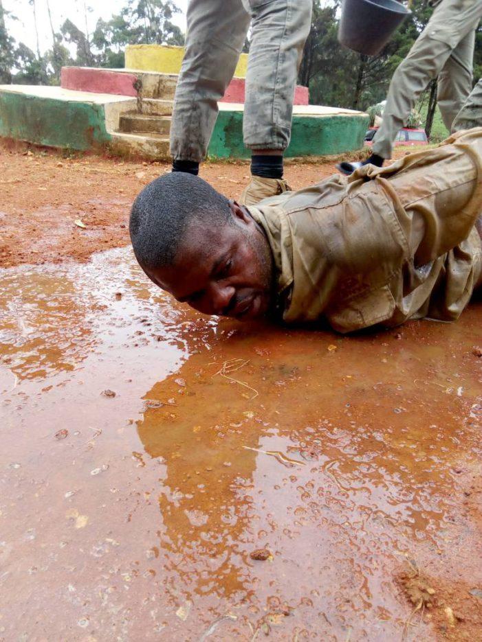 Cameroun: le gouvernement reconnaît des exactions sur un milicien séparatiste (vidéo)